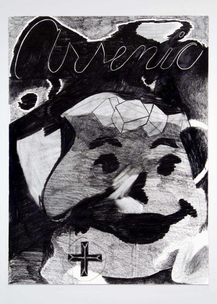Arsenic and Kool Aid 2020 Drawing by Aaron King Art 18''x24''