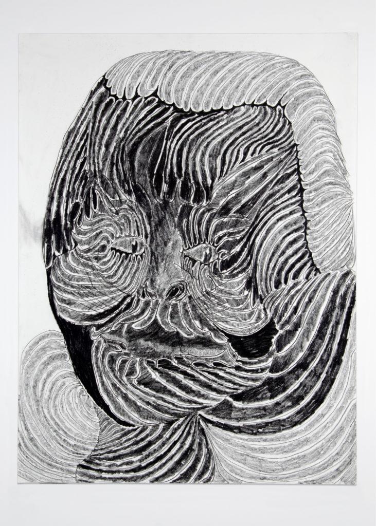 Cat Head 2020 Drawing by Aaron King Art 18''x24''